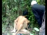 Asian Teenagers Learn How To Fuck In A Jungle